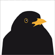 Ann Nystrom black bird greeting card